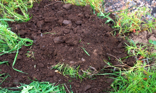 5 different soil types know your soil type growth as for All about soil facts