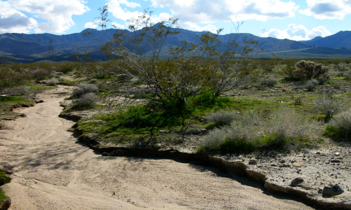 dry riverbed